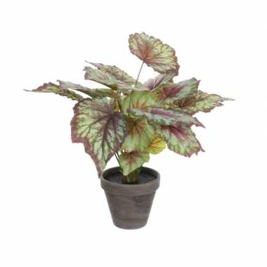 Hobby begonia kunstplant rood grijze sierpot h d
