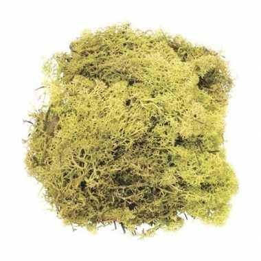 Hobby decoratie mos lichtgroen gram