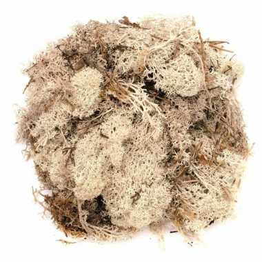 Hobby decoratie mos naturel gram