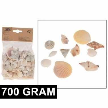 Hobby decoratie schelpen mix gram