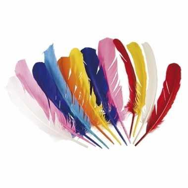 Hobby gekleurde indianen veren stuks