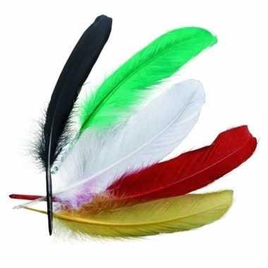 Hobby gekleurde indianenveren