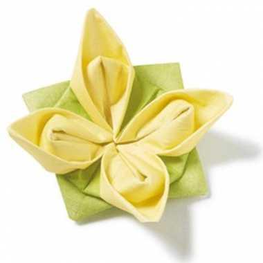 Hobby gele vouwbare servet stuks