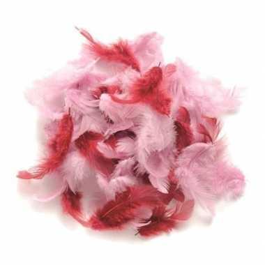 Hobby gram decoratie veren roze tinten