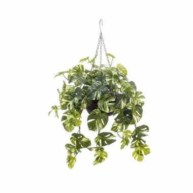 Hobby groen/gele monstera/gatenplant kunstplant hangende pot