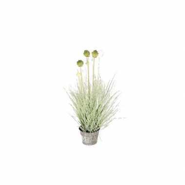 Hobby groene allium/sierui grasplant kunstplant grijze zinken