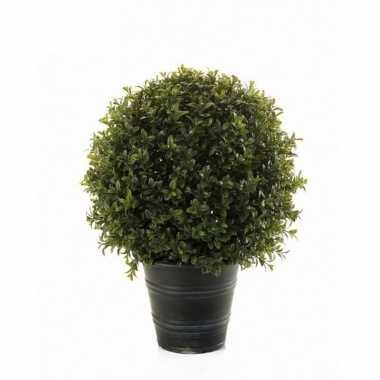 Hobby groene buxus/bol struik kunstplant zwarte plastic pot