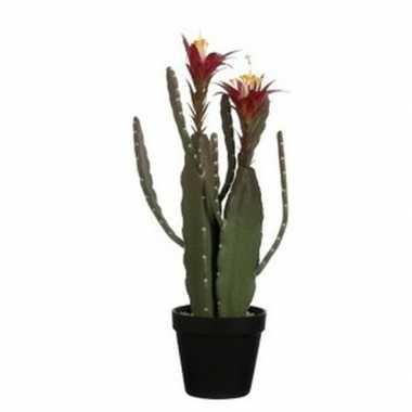 Hobby groene cactus/ kunstplant groene plastic pot