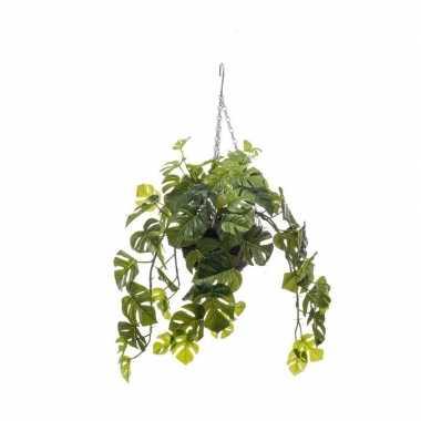 Hobby groene monstera/gatenplant kunstplant hangende pot