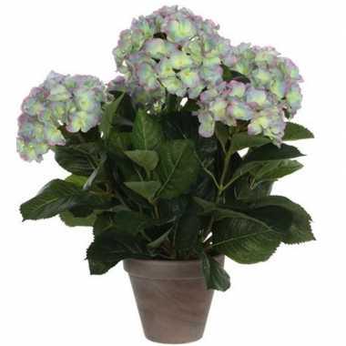 Hobby groene/paarse hortensia kunstplant pot