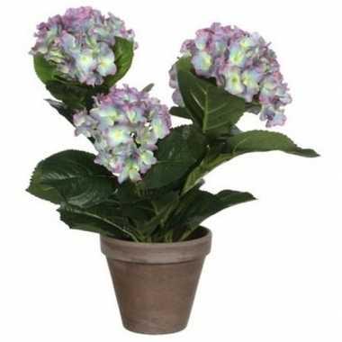 Hobby groene paarse hortensia kunstplant pot