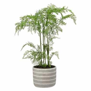 Hobby groene phlebodium/varen kunstplant grijze pot