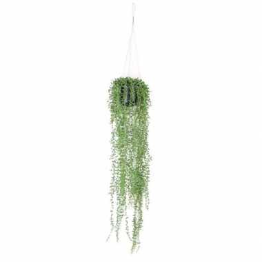 Hobby groene senecio/erwtenplant kunstplant hangende pot