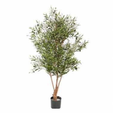 Hobby kunst olijfboom stam