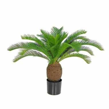 Hobby kunst palm