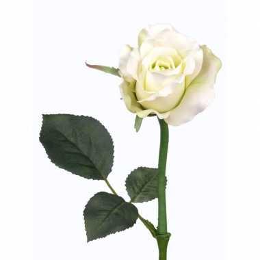 Hobby kunst roos alice wit