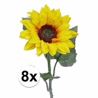Hobby kunst zonnebloemen
