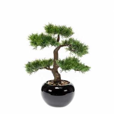 Hobby kunstplant bonsai boom zwarte pot