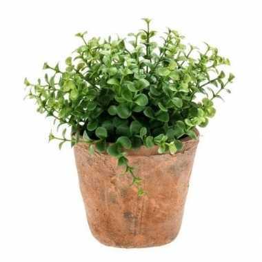 Hobby kunstplant eucalyptus groen oude terracotta pot
