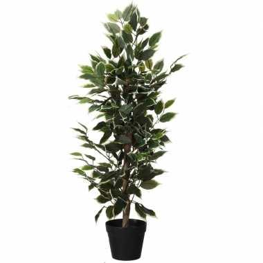 Hobby kunstplant ficus groen/wit