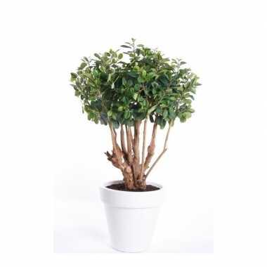 Hobby kunstplant ficus groen witte ronde pot