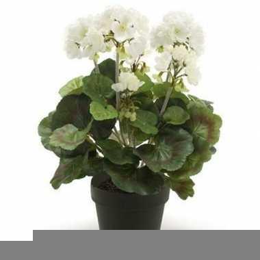 Hobby kunstplant geranium wit zwarte pot
