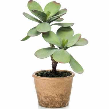 Hobby kunstplant groene kalanchoe vetplant bruine pot