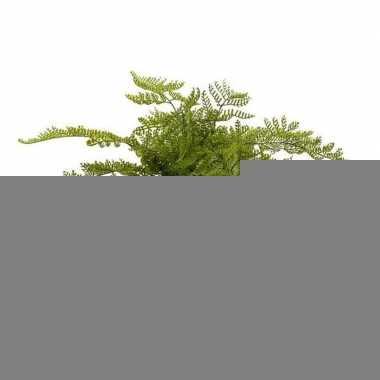 Hobby kunstplant herfst varen groen pot
