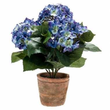 Hobby kunstplant hortensia blauw oude ronde terracotta pot