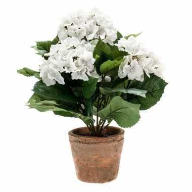 Hobby kunstplant hortensia wit oude ronde terracotta pot