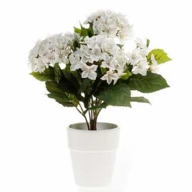 Hobby kunstplant hortensia wit witte pot