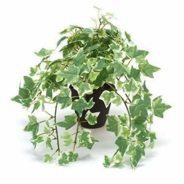 Hobby kunstplant klimop groen/wit zwarte pot