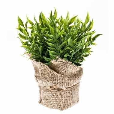 Hobby kunstplant muizendoorn kruiden groen jute pot