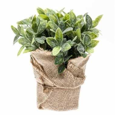 Hobby kunstplant munt kruiden groen jute pot