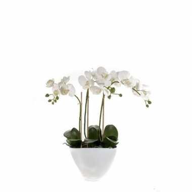 Hobby kunstplant orchidee wit pot