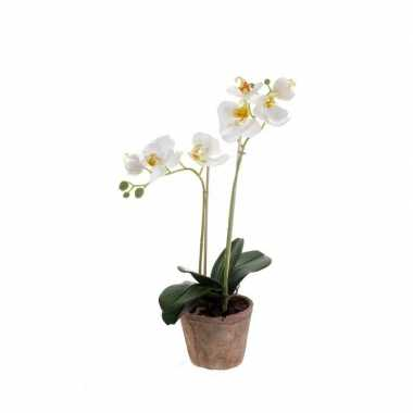 Hobby kunstplant orchidee wit pot