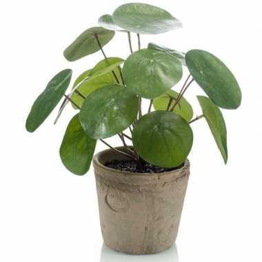 Hobby kunstplant pilea groen pot