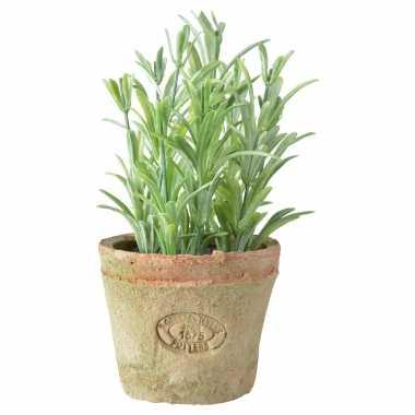 Hobby kunstplant rozemarijn kruiden terracotta pot