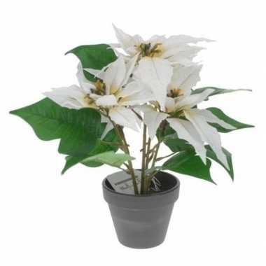 Hobby kunstplant witte kerstster pot