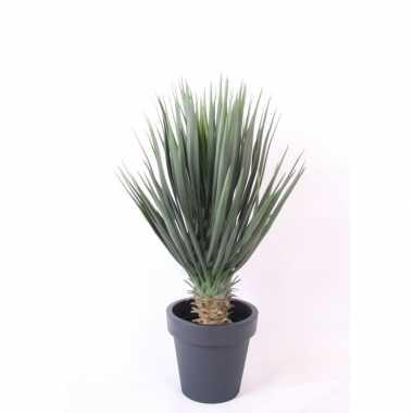 Hobby kunstplant yucca rostrata palmlelie antraciet pot