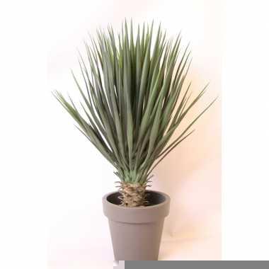 Hobby kunstplant yucca rostrata palmlelie grijze pot