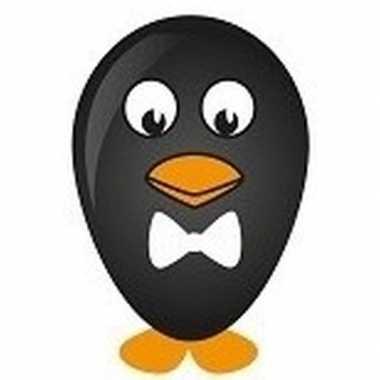Hobby pinguin ballon versieren