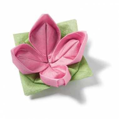 Hobby roze vouwbare servet