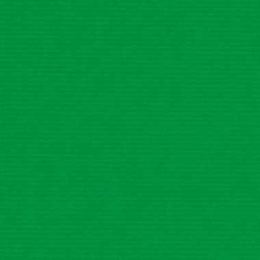 Hobby schoolboeken kaftpapier groen rol