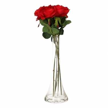 Hobby smalle vaas rode rozen 10100033