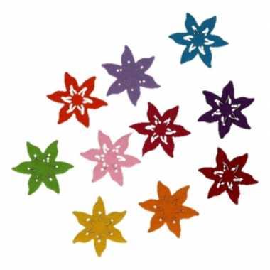 Hobby vilt gekleurde vilten ster bloemen