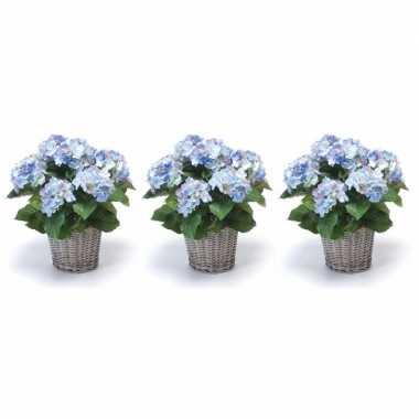 Hobby x blauwe hortensia kunstplanten mand
