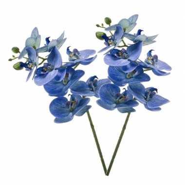 Hobby x blauwe phaleanopsis/vlinderorchidee kunstbloemen