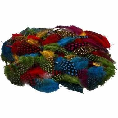 Hobby x gekleurde parelhoen sier veren