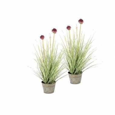 Hobby x groene allium/sierui kunstplanten grijze zinken
